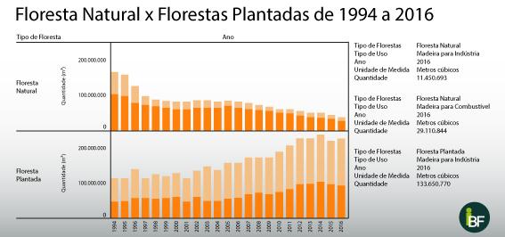 Florestas naturais x florestas plantadas